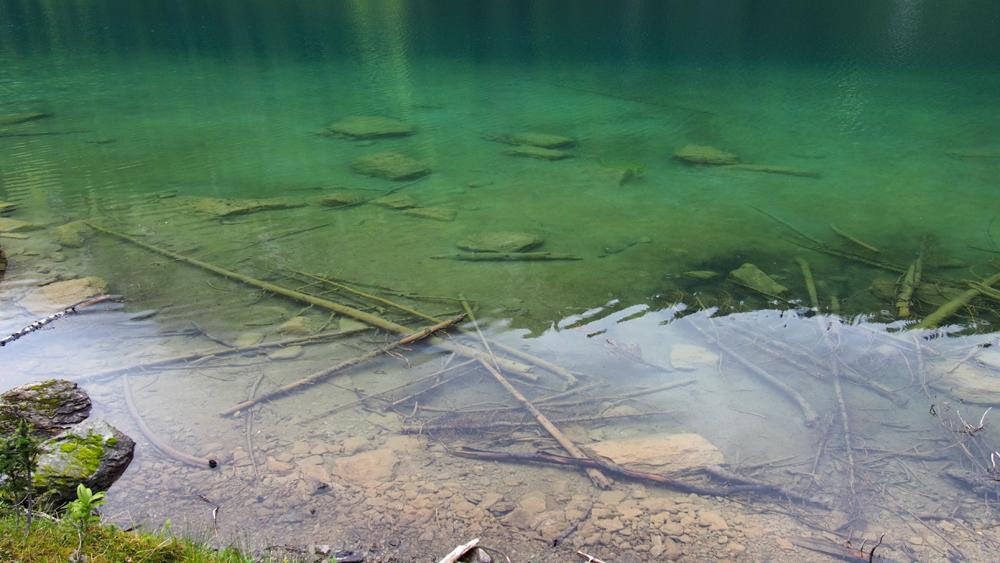 Queen Mary Lake. Syvänturkoosissa vedessä kummitteli uppotukkeja ja kivenlohkareita.