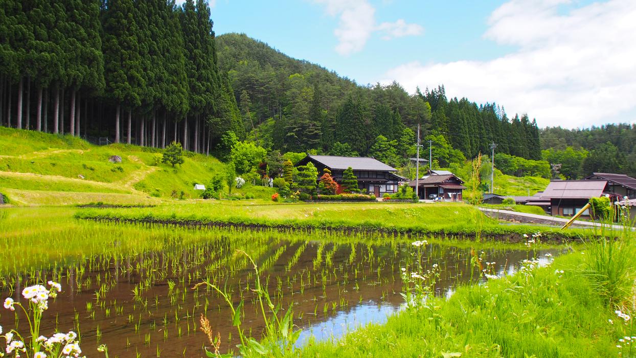 Hida-Furukawa