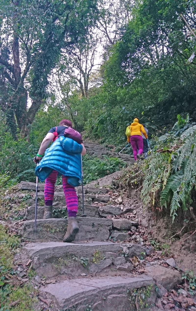 Poon Hill Trek Jhinu