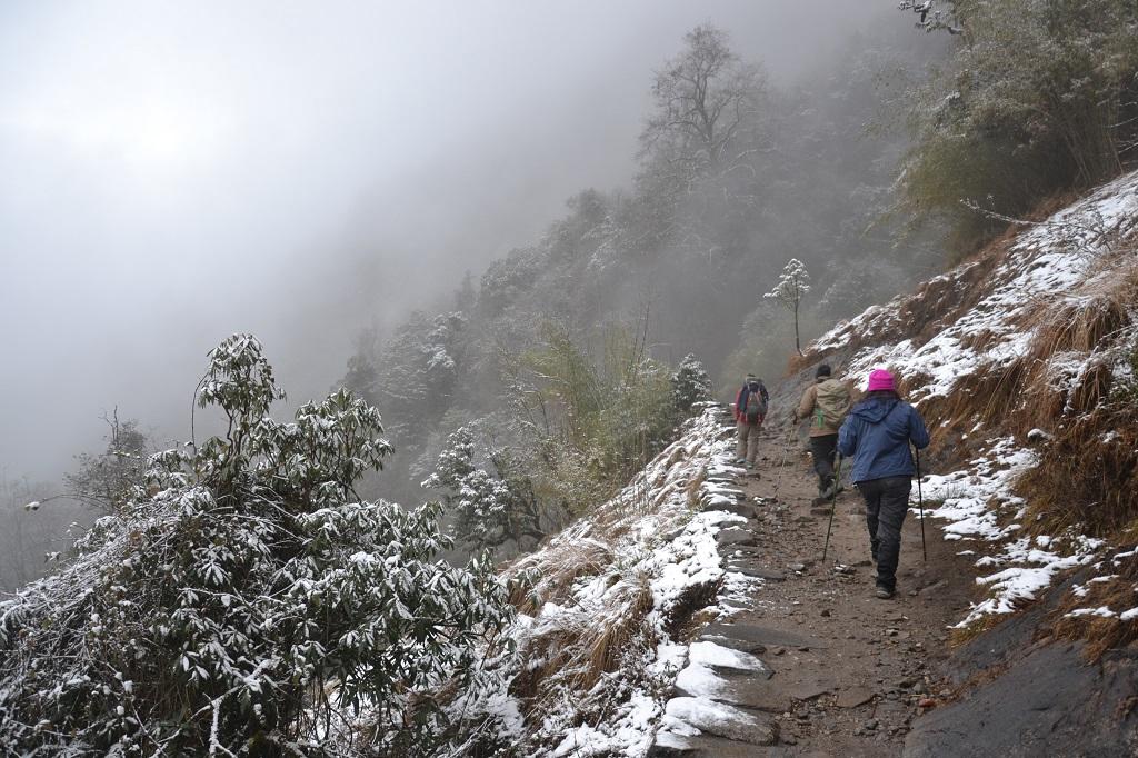 Annapurna Sanctuary. Kuva: Reetta Näätänen