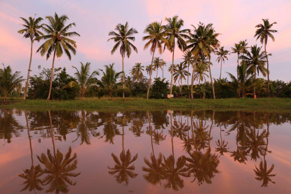 Travel Bloggers Give Back. Kerala, Kumarakom. Esimerkiksi tämän kuvan voi ostaa Matkamessuilta omalle seinälleen haluamassaan koossa. © Päivi Kaarina Laajanen.