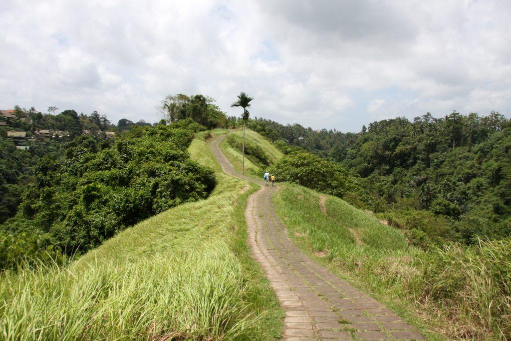 Balin nähtävyydet - Campuhan Ridge Walk