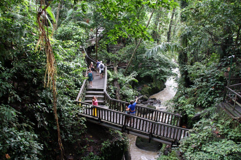 Balin nähtävyydet - Ubudin apinametsä