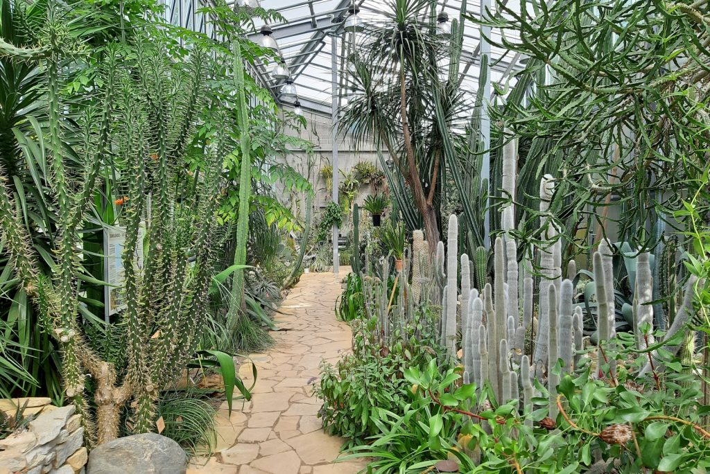 Tallinnan kasvitieteellinen puutarha: